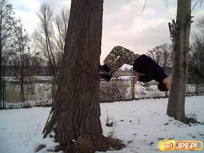 Seba (Salto od drzewa)
