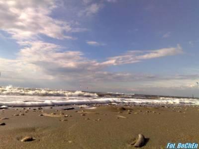 Plaża w Holandii