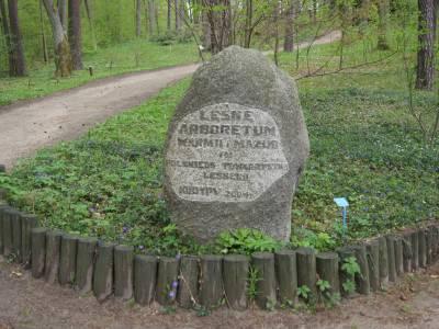 Arboretum - Nadleśnictwo Kudypy - Lasy Państwowe