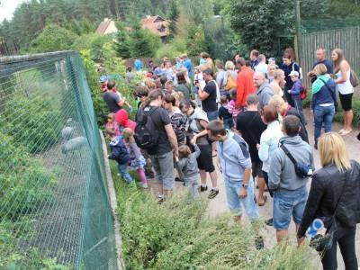Park dzikich zwierząt w Kadzidłowie 3