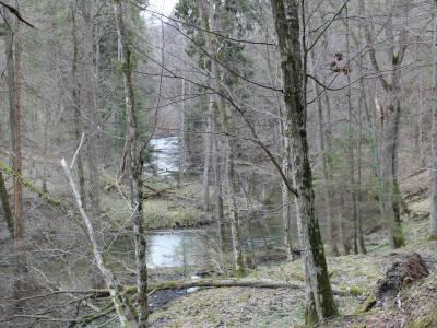 Źródła rzeki