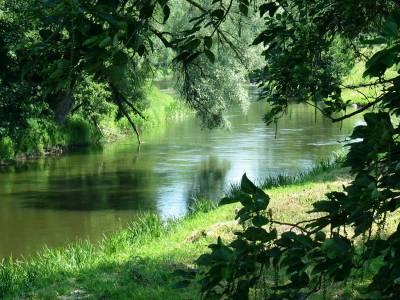 Piękne zdjęcia natury z Bartoszyc