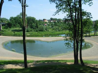 Piękne zdjęcia natury z Bartoszyc 5