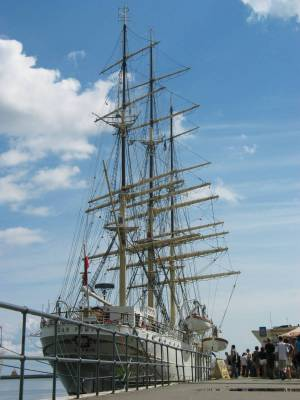 Wielkie staki w Gdynii 0