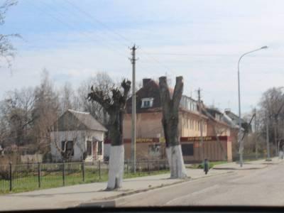 Багратионовск 3