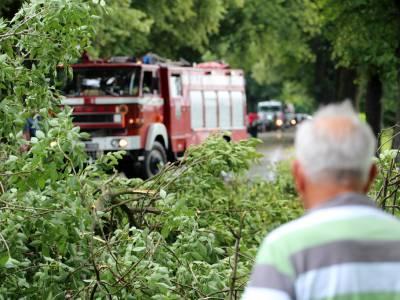 Powalone drzewo na drodze Dobre Miasto - Orneta 1