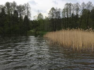 Pomosty na jeziorze Tyrkło 7