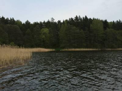 Pomosty na jeziorze Tyrkło 8