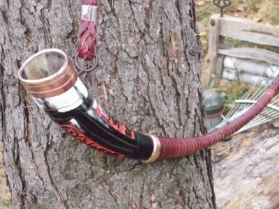 Medieval horn 1