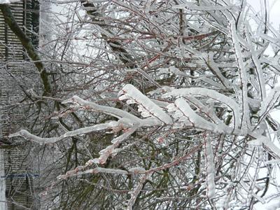 zeszloroczna zima