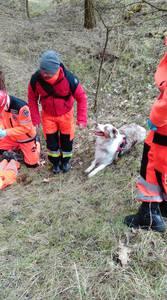 16.03.19 - cwiczenia z poszukiwań i ewakuacji w lesie 9