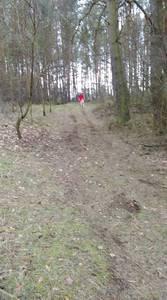 16.03.19 - cwiczenia z poszukiwań i ewakuacji w lesie 57