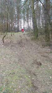 16.03.19 - cwiczenia z poszukiwań i ewakuacji w lesie 58