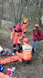 16.03.19 - cwiczenia z poszukiwań i ewakuacji w lesie 83