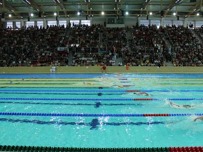 Mistrzostwa Polski w pływaniu 24