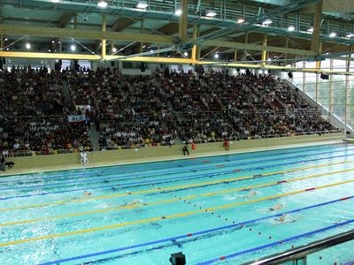 Mistrzostwa Polski w pływaniu 41