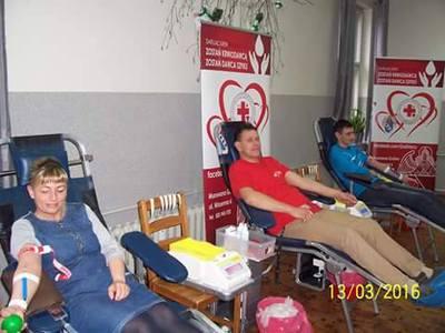 181 akcja poboru krwi 2