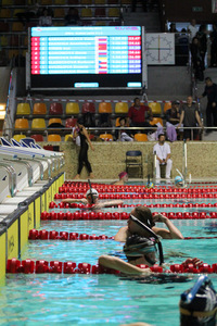 Zawody pływackie w Olsztynie 115