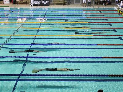 Zawody pływackie w Olsztynie 147