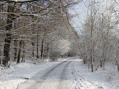 Zima już niebawem 1