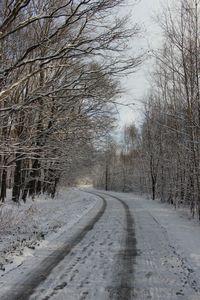 Zima już niebawem 7