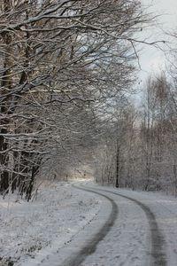 Zima już niebawem 8