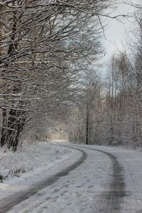 Zima już niebawem 10