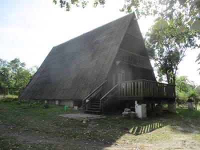 Duży dachowiec 1
