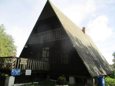 Duży dachowiec 2