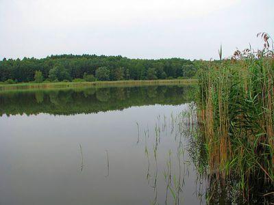 Jezioro Lachotka 8