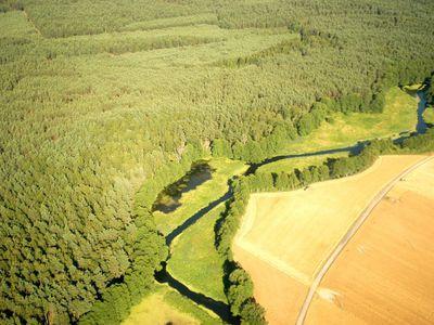 Rzeka Piława 8