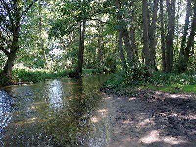 Rzeka Piława 14