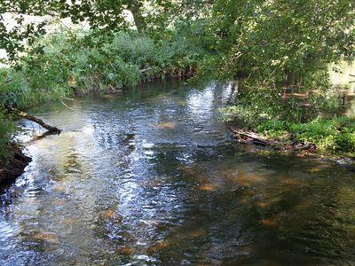 Rzeka Piława 17