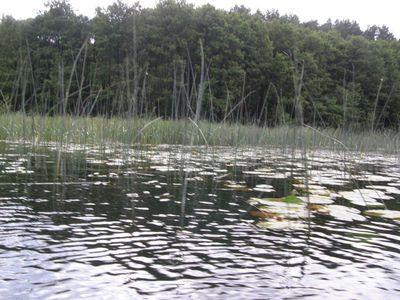 Jezioro Dąb 7