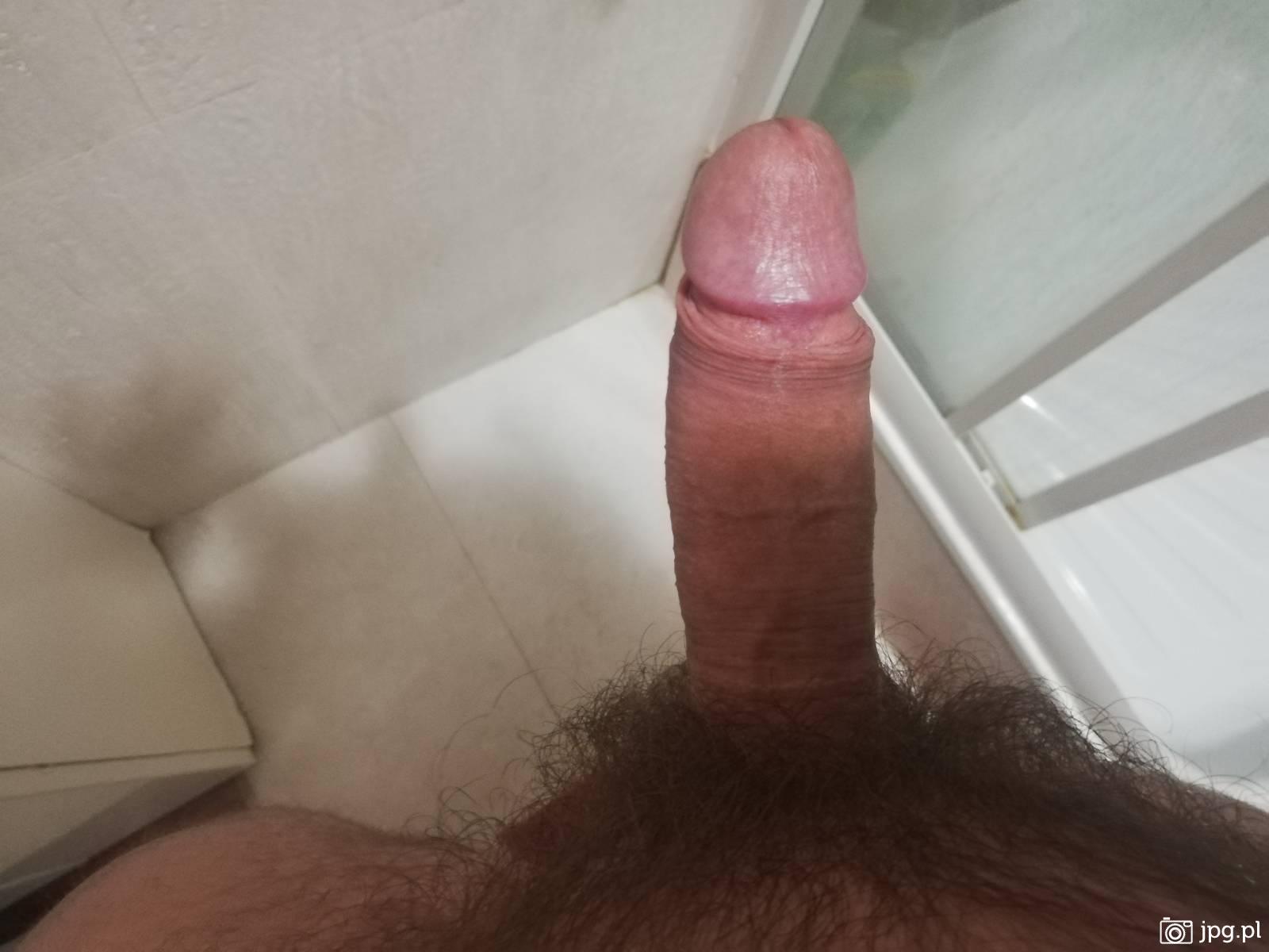 penis w spoczynku