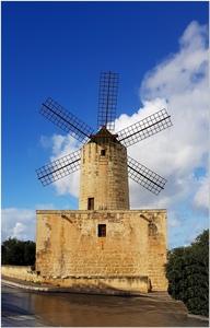 Wiatrak na Malcie.