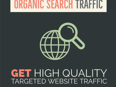 Targeted Web Traffic Packages Picture 3