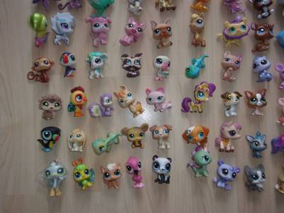 lps 13