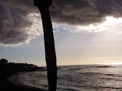 czy to palma w chmurach a może trąba  powietrzna