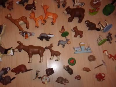 zwierżęta 12