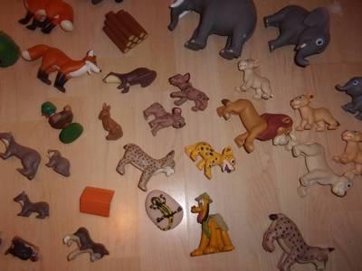 zwierżęta 14